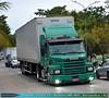 Scania T113H 360hp - Carreta Baú 3 eixos