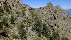 Fin du contournement en ligne de niveau du ravin de Cassa