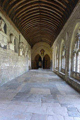 Cathedral Cloisters 1