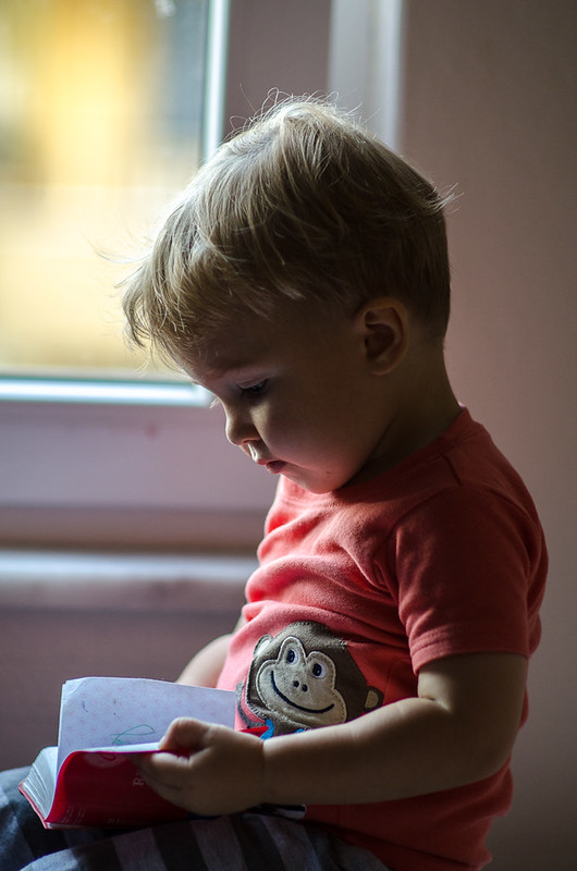 """15 June - Timothy """"reading"""" a pocket dictionary by the window."""
