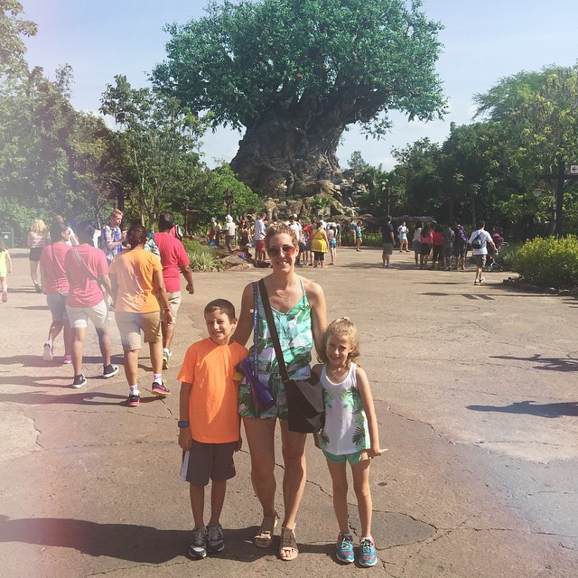 One of my favorite parks, Animal Kingdom! 🐘🐘🐘 #treeoflife  #animalkingdom #disney