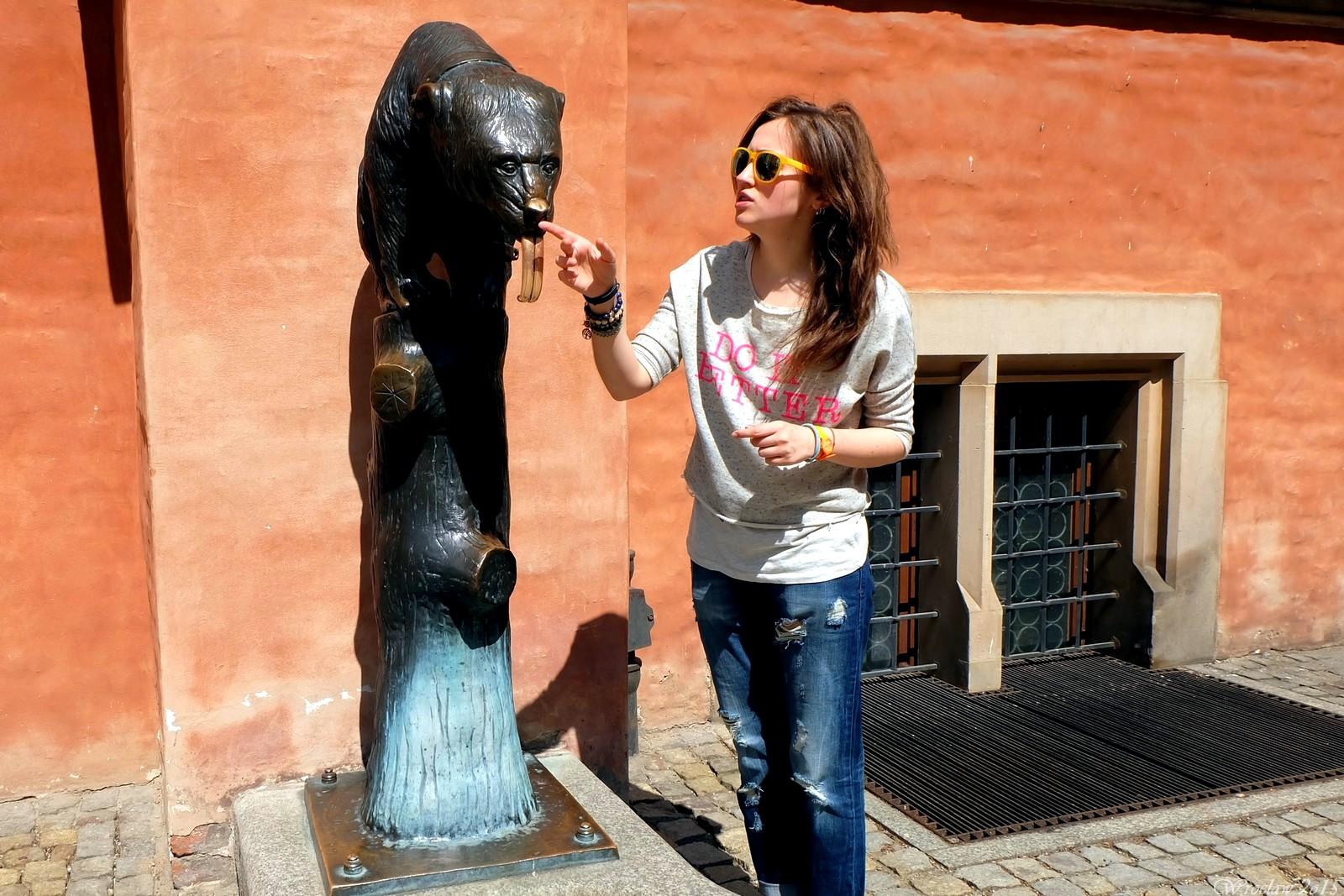 Bear on Rynek, Wroclaw, Poland