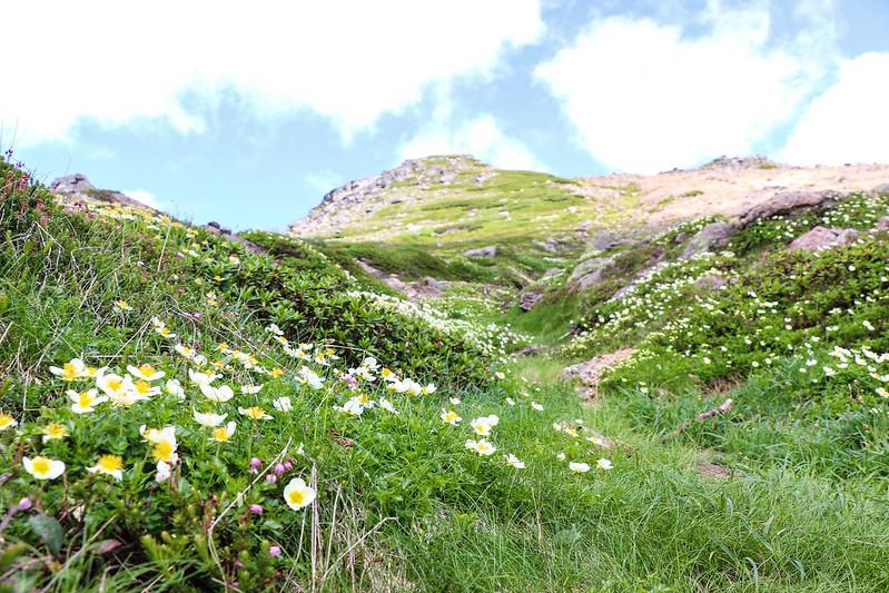2014-07-20_00925_北海道登山旅行.jpg