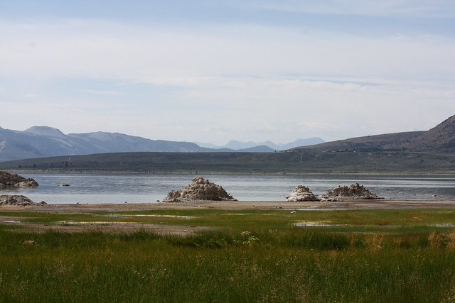 View from boardwalk at Mono Lake Cty Park