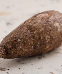 Cassava tuber.