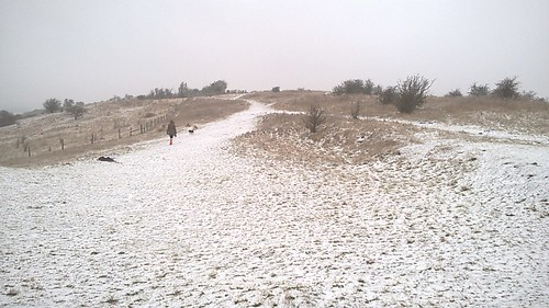 On Warden Hill
