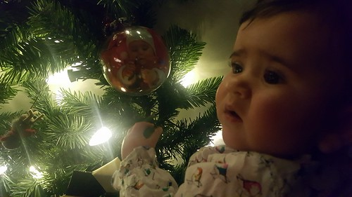 Condo-sized Christmas Tree