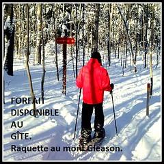 Randonnée à raquettes au Mont Gleason. Gite du Champayeur.