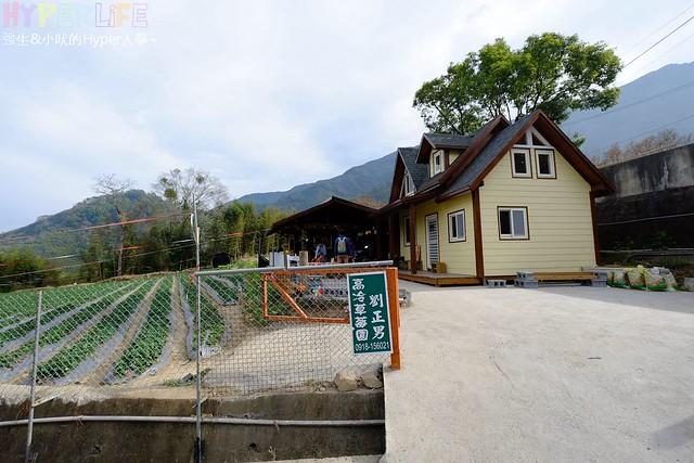 劉正男高冷草莓園 (3)