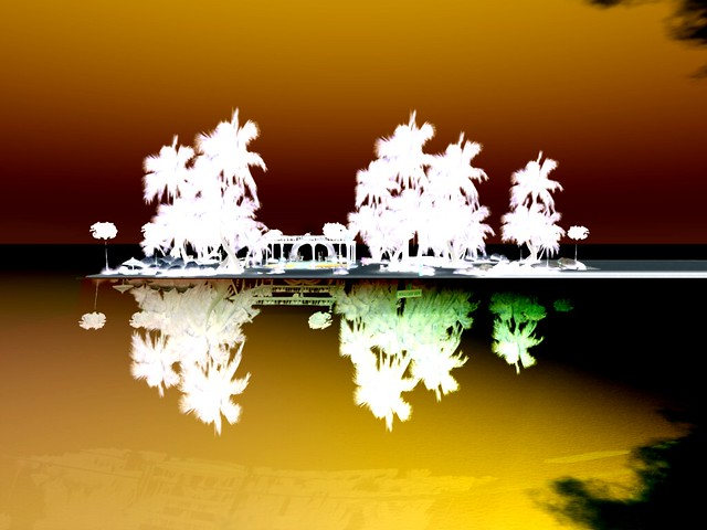 Bananaz Beach Club - Reflected Palms II