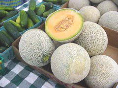coconut(0.0), plant(0.0), gourd(0.0), cantaloupe(1.0), honeydew(1.0), produce(1.0), fruit(1.0), food(1.0), muskmelon(1.0), galia(1.0), melon(1.0),