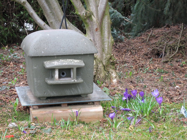 Bumblebee nest box | Flickr - Photo Sharing!
