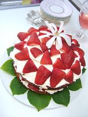 breakfast(0.0), semifreddo(0.0), chocolate cake(0.0), plant(0.0), raspberry(0.0), pavlova(1.0), strawberry pie(1.0), bavarian cream(1.0), strawberry(1.0), baked goods(1.0), whipped cream(1.0), frutti di bosco(1.0), produce(1.0), fruit(1.0), food(1.0), dish(1.0), torte(1.0), cuisine(1.0), mascarpone(1.0),