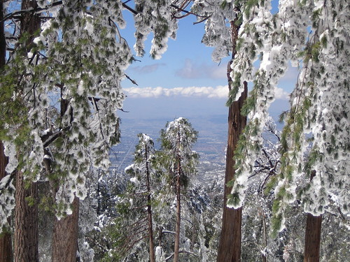 Error for Knotty pine cabins idyllwild
