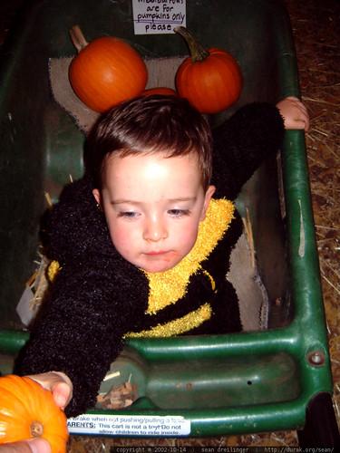 2002-10-14, halloween dscf3079