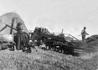 Threshing Grain at Coaldale farm
