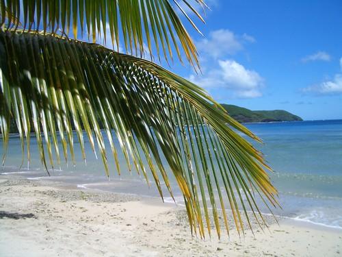 Fiji Beach - 3