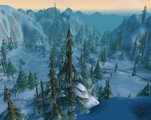 More aerial views of fir trees in snowy terrain