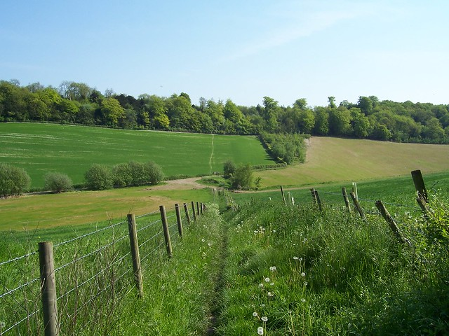 The fields near Dean's Farm