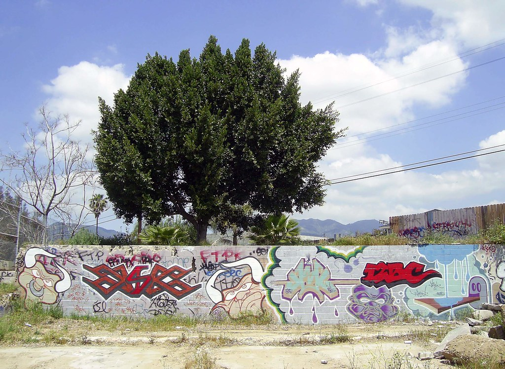 The Graffiti Tree