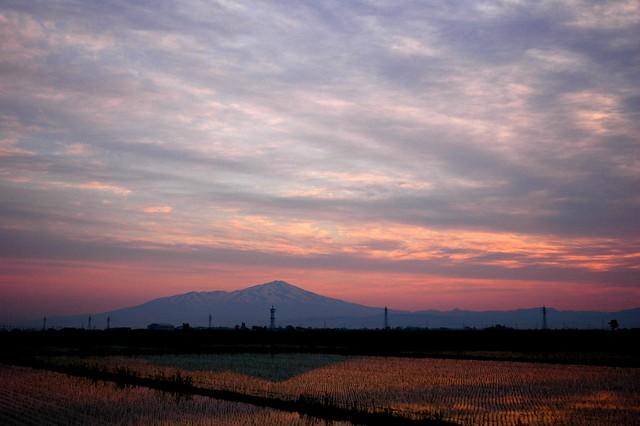 Mt. Chokai sunrise over rice paddies