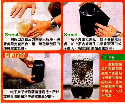 DIY mosquito trap - steps 4 and 5