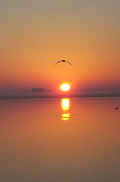 Sunrise through Sea mist
