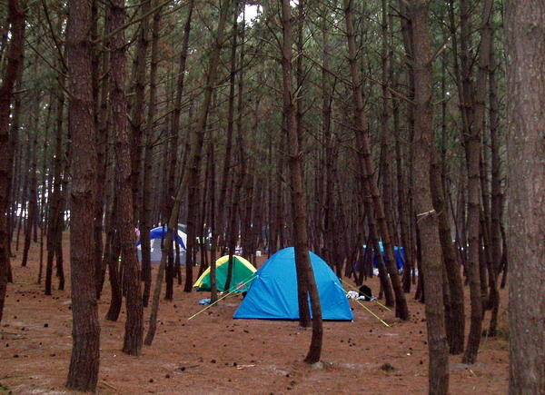 Camp site. Anmyeondo Island