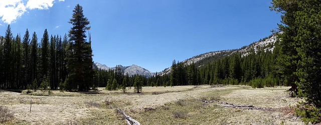 Evolution Valley meadow, m850