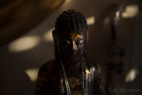 Lights of Buddha