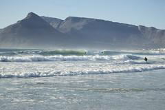 International Surf day 2015-034