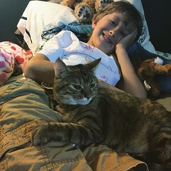 @ibaby796 likes rest time now that he has a buddy. #Ginger #cat #adoption