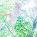 Like a Green by AZURE_TB