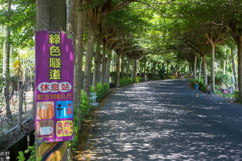 潮洲泗林綠色隧道 (12)