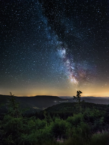 A Black Forest Night