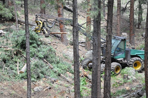 A tractor working on trees