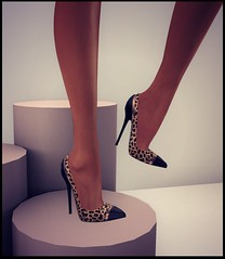 Wild Heels