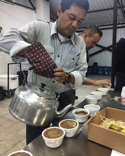 elsalvador coffee cupping hawaii cuatrom perfectdailygrind volta ruby