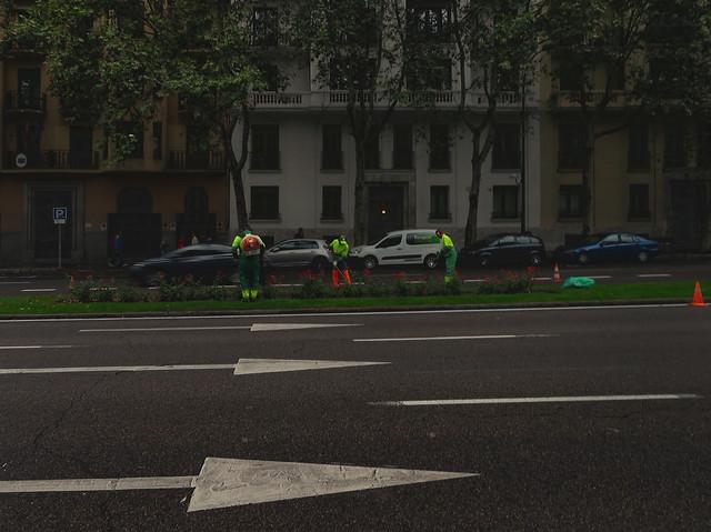 empleados de Medio Ambiente - Calle de Alfonso Xii, Madrid (2016)