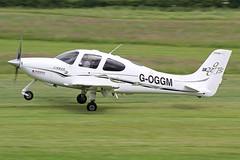 G-OGGM