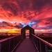 Alviso sunset by Liping Photo