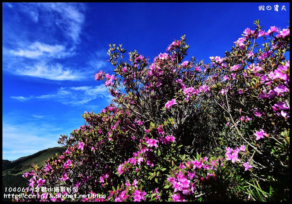 1040619合歡山攝影外拍DSC_1358