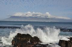 Robben Island (7)