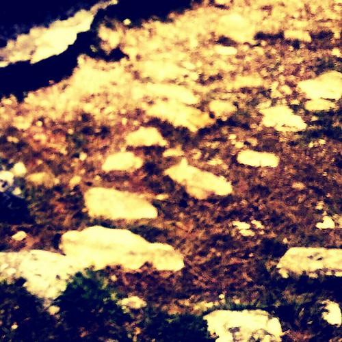 #particolare dal pozzo #collelongo #vallelonga #valledamplero #marsica