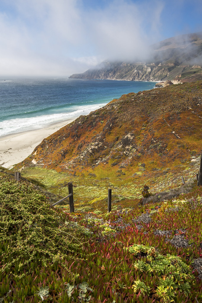 Lifting Fog, Big Sur v
