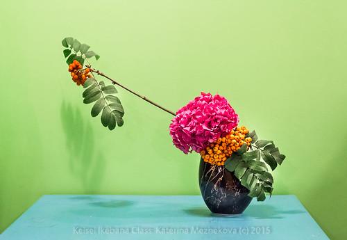 Hydrangea:Autumn. Mass & Line Ikebana