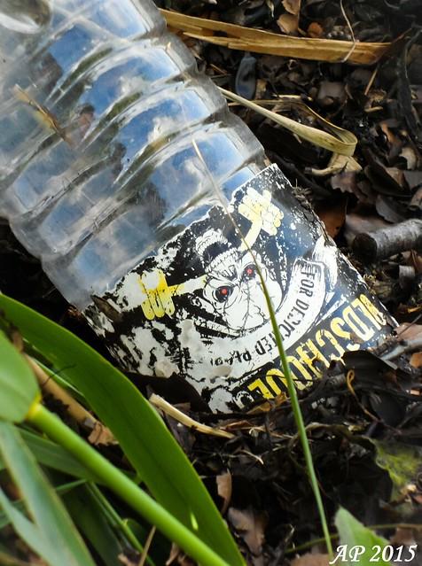Plages et Bouteilles / Strands and Bottles