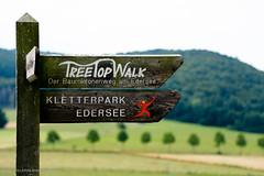 Kletterpark Edersee - Baumkronenpfad