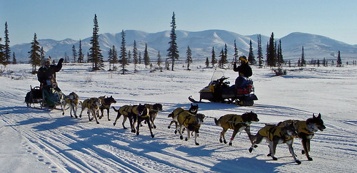 My Public Lands Roadtrip: Iditarod National Historic Trail in Alaska | by mypubliclands