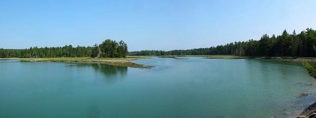 Old Pond 7-11-15